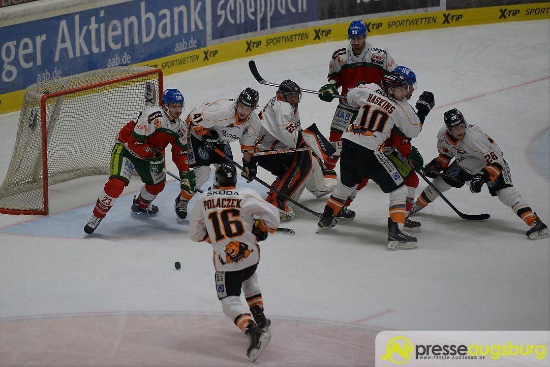 Panther verpflichten Aleksander Polaczek – Wer wird sein Augsburger Trainer ... - Presse Augsburg