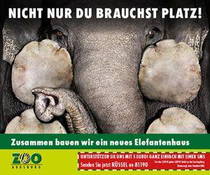 zoo_elefant_banner