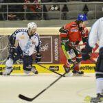 140218_AEV_Hamburg_023-150x150 Panther ringen die Hamburg Freezers nieder und bewahren sich ihre Playoff-Chance Augsburger Panther News Sport  Presse Augsburg
