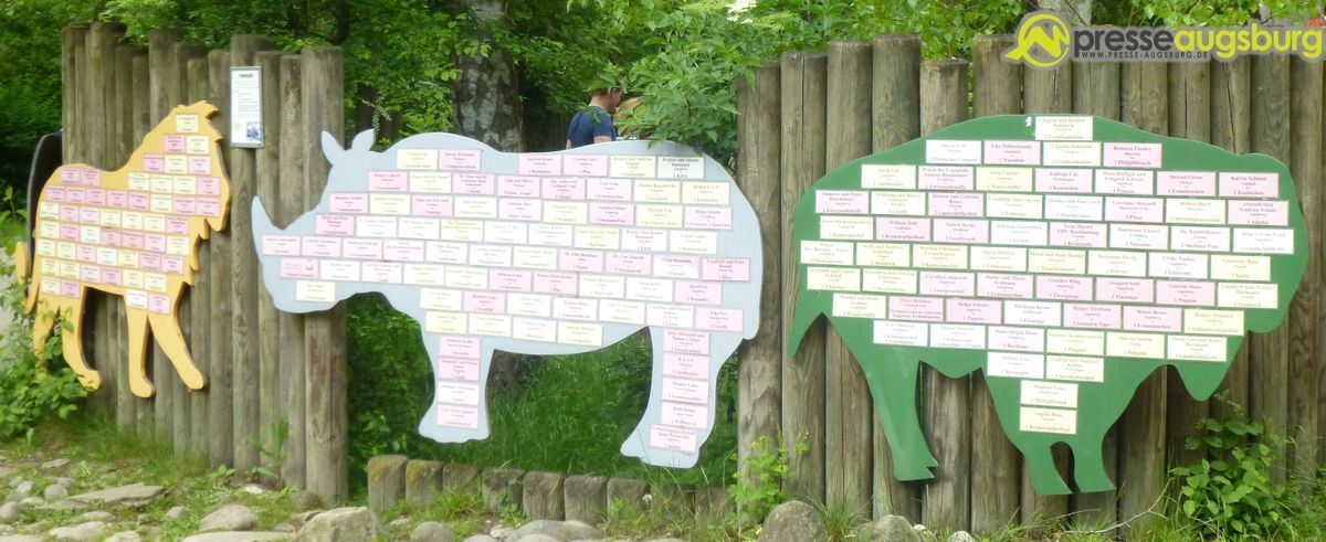 20140518_zoo_patentafel GEWINNSPIEL beendet| Haben Sie schon Ihr eigenes Nashorn? Freizeit Gewinnspiele News Augsburg Gewinnspiel PAtenschaft zoo |Presse Augsburg