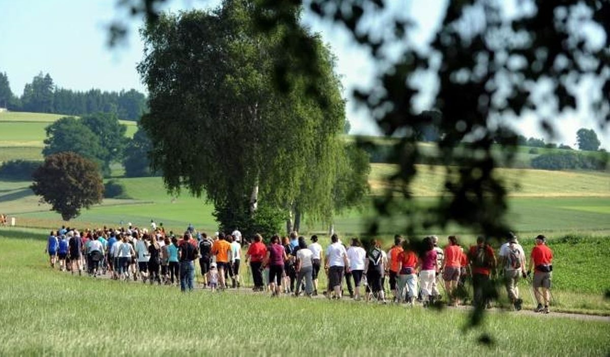 751_500_landkreislauf-2011-in-auerbach Jetzt geht es wieder los: Nordic-Walker starten in Zusmarshausen Freizeit News Sport Kleeblattlauf Landkreis Augsburg Nordic Walking Sport in Augsburg Zusmarshausen  Presse Augsburg