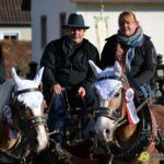 20141026_gabelbachergreut_leonhardi_026-150x150 BILDERGALERIE | Der Leonhardiritt in Gabelbachergreut Bildergalerien News Gabelbachergreut Leonhardiritt |Presse Augsburg