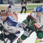 16_11_14_AEV_Iserlohn0025-150x150 1:4! Panther verschenken Punkte in Unterzahl Augsburger Panther News Sport Adelsried AEV DEL iserlohn Panther roosters |Presse Augsburg