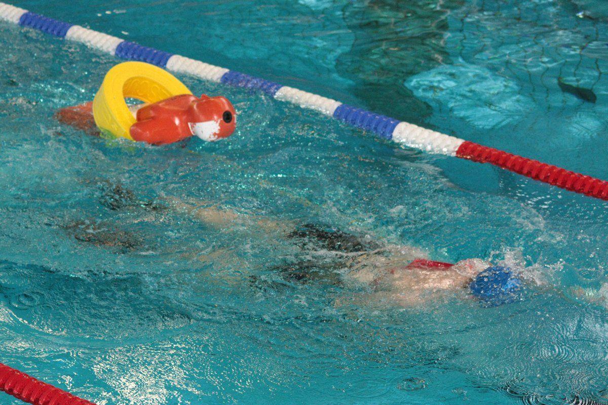 Pressefoto-KV-2015-Lifesaver DLRG  Nachwuchsretter kämpfen um Medaillen Freizeit News Sport Vereinsleben DLRG DLRG KV Augsburg/Aichach-Friedberg e. V.  Presse Augsburg