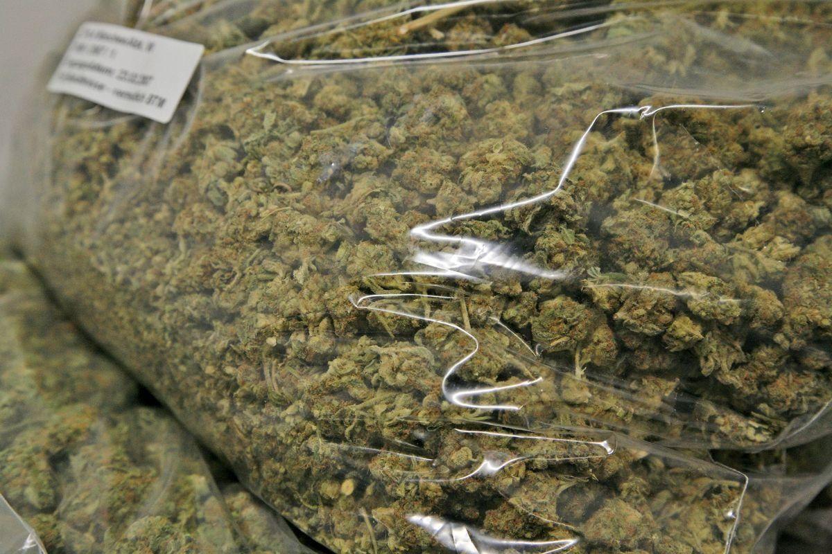 Zoll Marihuana In Tueten Drogen Rauschgift