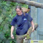 20150530_zoo_025-150x150 Bildergalerie | Ein Spaziergang durch den Augsburger Zoo - Die vielleicht letzten Aufnahmen von Nashorn Daniel Bildergalerien Freizeit News Bildergalerie Zoo Augsburg |Presse Augsburg