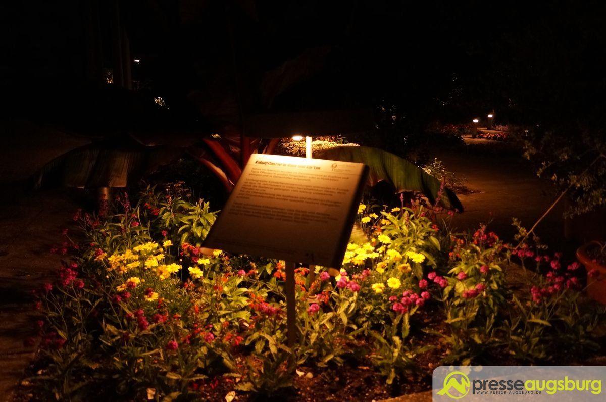20150620 nacht der lichter botanischer garten 005 presse augsburg nachrichten f r augsburg. Black Bedroom Furniture Sets. Home Design Ideas