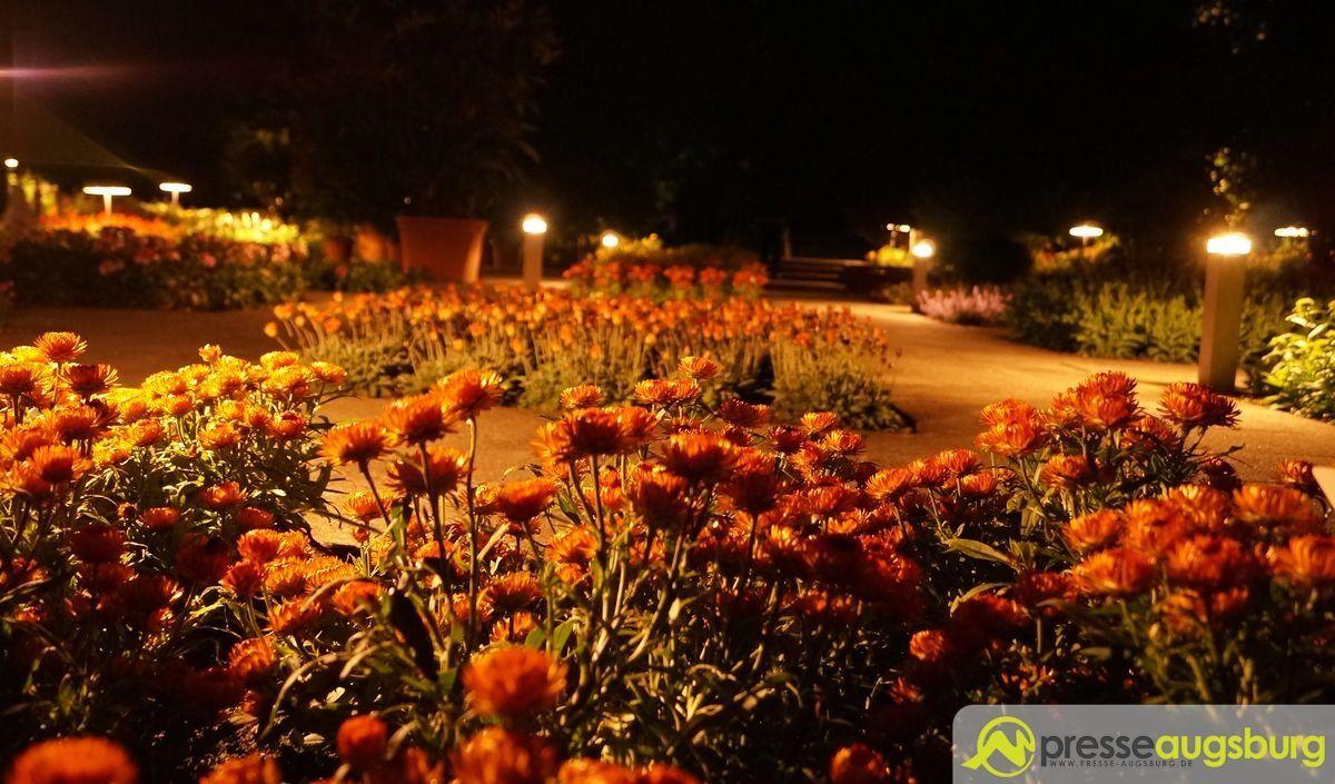 20150620 nacht der lichter botanischer garten 006 presse augsburg nachrichten f r augsburg - Garten lichter ...