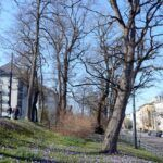 2016-03-20-Schießgraben-–-16-150x150 Bildergalerie | Es wird Frühling in der Fuggerstadt Bildergalerien News Augsburg Frühling |Presse Augsburg