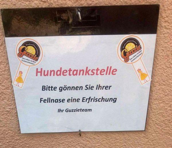 """Es ist heiß   """"Hundetankstelle"""" in der Augsburger Altstadt eingerichtet"""