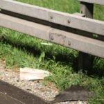 2017-07-18_A96_Mindelheim_Woerishofen_toedlicher_Unfall_Krad_Pkw_Feuerwehr_Poeppel-0010-150x150 Bei Mindelheim   16-jähriger Motorradfahrer auf der A96 von Pkw überrollt News Newsletter Ostallgäu Polizei & Co A96 Mindelheim Motorrad Sperre Unfall  Presse Augsburg