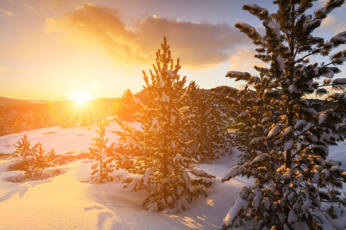 url-2 Winterwetter: sibirisch oder mediterran? - Über Wetterprognosen und deren Wahrscheinlichkeiten News Schnee Wettervorhersage Winterwetter 2017  Presse Augsburg