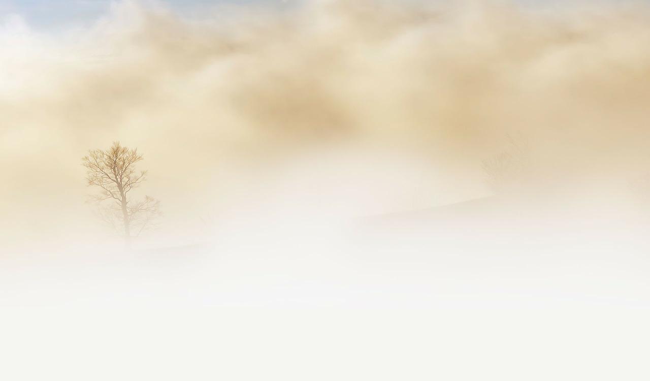 nebel_1508254898 Kreis Dillingen | Achtung Nebel - Angestellter versenkt Transporter im See Dillingen News Polizei & Co Gundelfingen Peterswörth Unfall Wünschsee |Presse Augsburg
