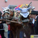 DSC_6515-150x150 Tausende trotzen beim Leonhardiritt in Inchenhofen dem Regen Aichach Friedberg Bildergalerien Freizeit News Inchenhofen Leonhardiritt  Presse Augsburg