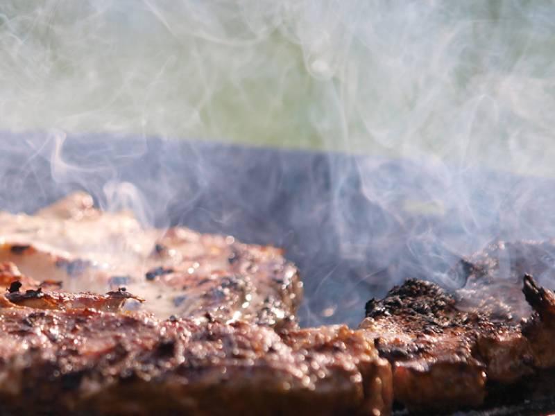 Bundesregierung Tropenholz In Zahlreichen Grillkohle Proben