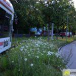 DSC_9107-150x150 Tödlicher Unfall beim Klinikum Augsburg - Frau wird von Straßenbahn erfasst und stirbt Augsburg Stadt Bildergalerien News Newsletter Feuerwehr Frau stirbt Klinikum Augsburg Polizei Straßenbahn Unfall  Presse Augsburg