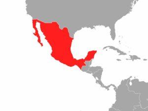 Flugzeugunglück in Mexiko - Viele Tote befürchtet