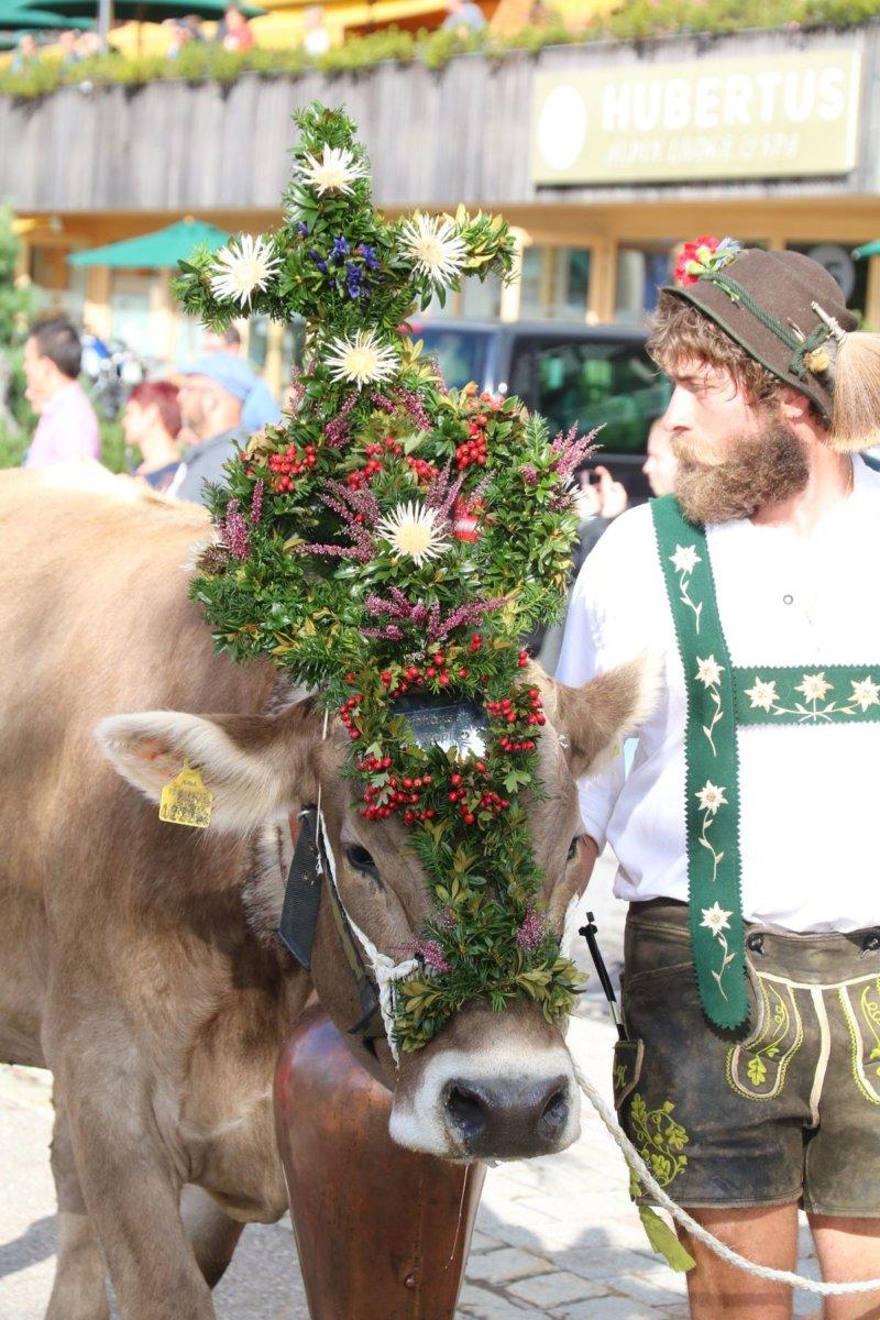 IMG_9126 Bildergalerie   Der Sommer geht zu Ende - Viehscheid in Balderschwang Bildergalerien Freizeit News Newsletter Oberallgäu Balderschwang Viehscheid  Presse Augsburg