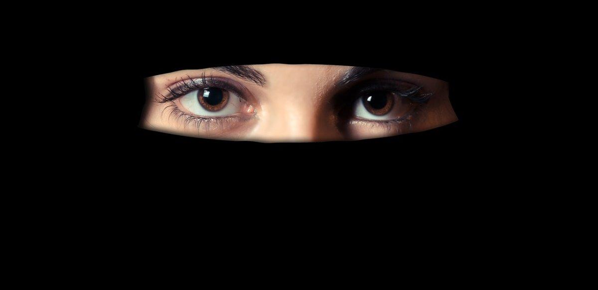 the-1621517_1280 Bundesrat | Gesetzentwurf zum Verbot der Gesichtsverhüllung vorgestellt Politik & Wirtschaft Überregionale Schlagzeilen Bundesrat Burka Gesichtsverhüllung Niqab Prof. Dr. Winfried Bausback |Presse Augsburg