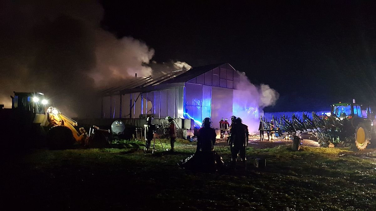 IMG-20181125-WA0051 Unterallgäu | 10 Kälber werden bei großem Brand in Bad Grönenbach getötet News Newsletter Polizei & Co Unterallgäu Bad Grönenbach Bauernhof Brand Feuer Feuerwehr Kälber |Presse Augsburg