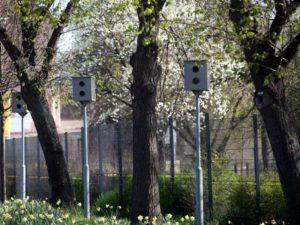 Niedersachsens Innenminister will höhere Geldbußen für Tempoverstöße