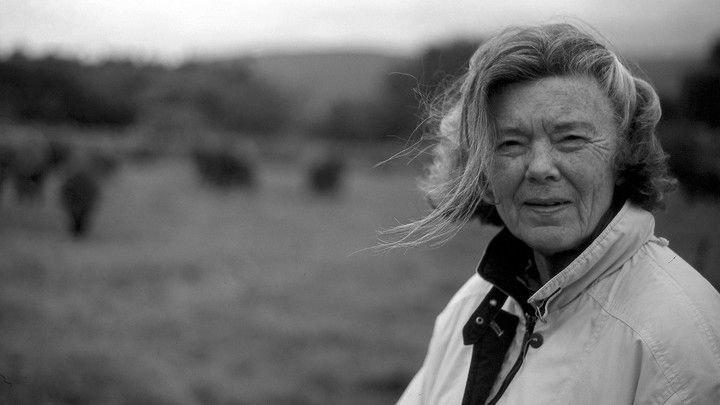 csm_rosamond_6fffedef69 Bestseller-Autorin Rosamunde Pilcher gestorben Überregionale Schlagzeilen Vermischtes Videos Rosamunde Pilcher |Presse Augsburg