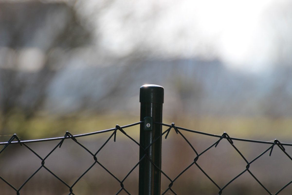 Wire Mesh Fence 762233 1280