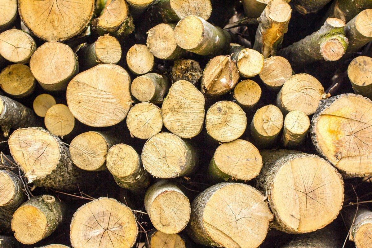 Wood 3408974 1280