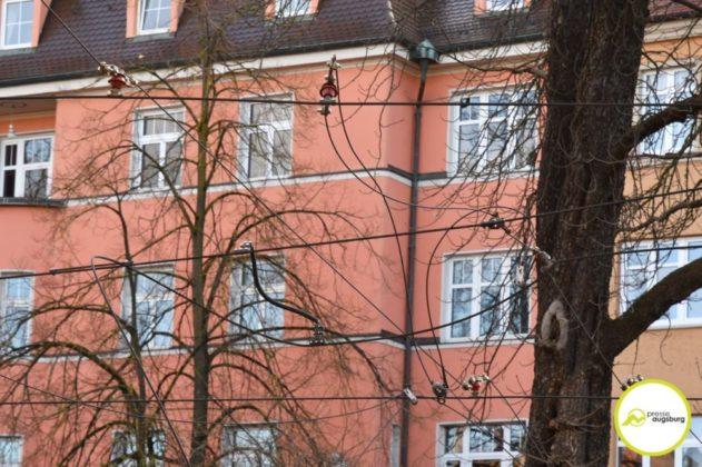 2019 03 10 Baum Am Kö – 10