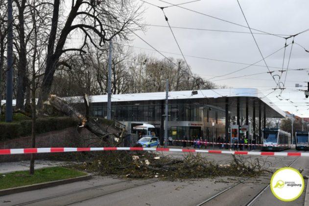 2019 03 10 Baum Am Kö – 22