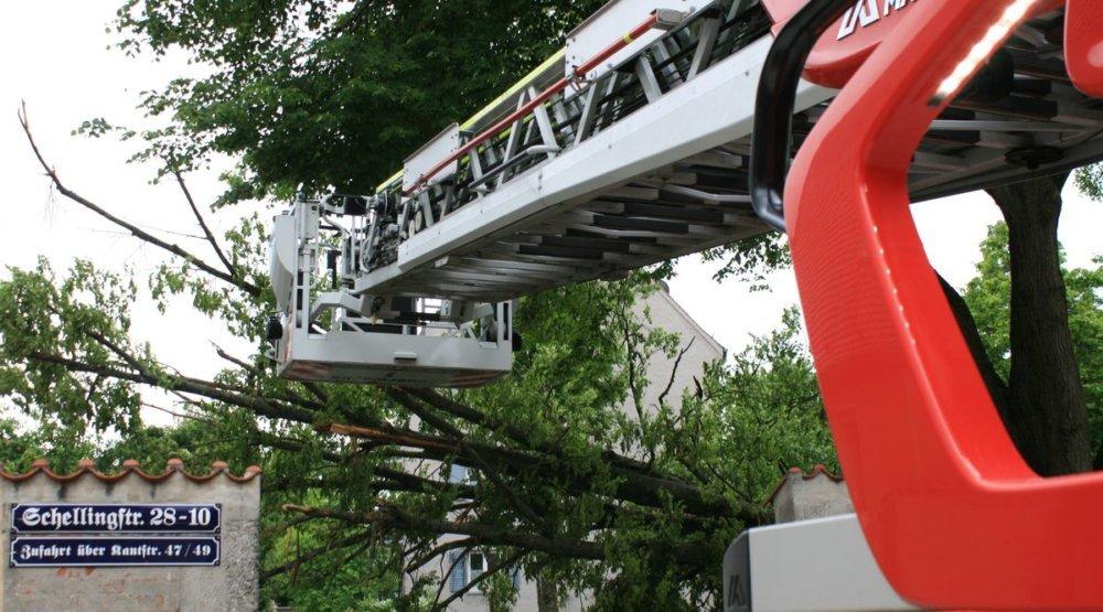 IMG_4790 Feuerwehreinsatz in Augsburg-Lechhausen - Baum fällt krachend um und auf Mauer Augsburg Stadt Bildergalerien News Polizei & Co Augsburg Baum Feuerwehr Lechhausen Linke Brandstraße Schellingstraße |Presse Augsburg