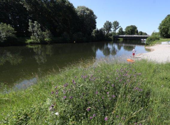 Uferaufweitung Großaitingen Pressefoto 2