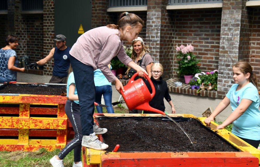 2019 07 16 Urban Gardening Vogeltor 02