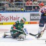 AEV_EHC_015-150x150 Augsburger Panther starten mit knapper Derby-Niederlage gegen München in die neue DEL-Saison Augsburg Stadt Augsburger Panther News Sport #NurderAEV Augsburger Panther DEL Saisonstart |Presse Augsburg