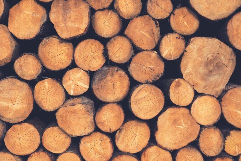 wood-1209632_1280 Gessertshausen | 6 Meter langer Holzstamm schlägt in Windschutzscheibe ein - Autofahrerin verletzt Landkreis Augsburg News Polizei & Co Baumstamm Gessertshausen Holz LKW Unfall |Presse Augsburg