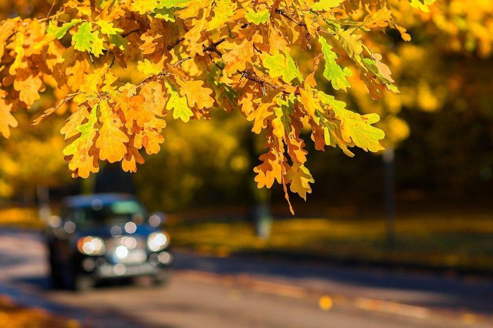 1 Autofahren im Herbst - Tipps für die richtige Vorbereitung Freizeit News |Presse Augsburg