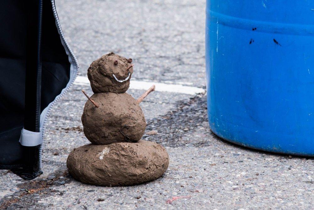 20200108_PM_WetterOnline_KeinWinter_Polarwirbel_b Der Polarwirbel hält den Winter fern Überregionale Schlagzeilen Vermischtes Polarwirbel Schnee Wetter winter |Presse Augsburg