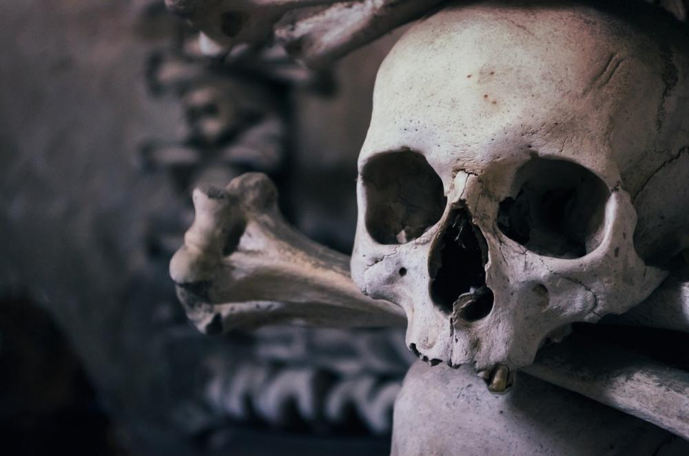 Skull 726253 1280