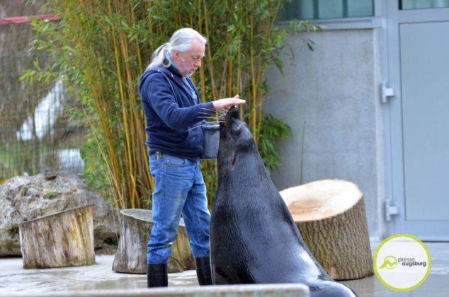 20200314_zoo-110-634x420 Bildergalerie | Frühling im Zoo Augsburg Augsburg Stadt Bildergalerien Freizeit News Newsletter Zoo Augsburg Zoo Augsburg |Presse Augsburg