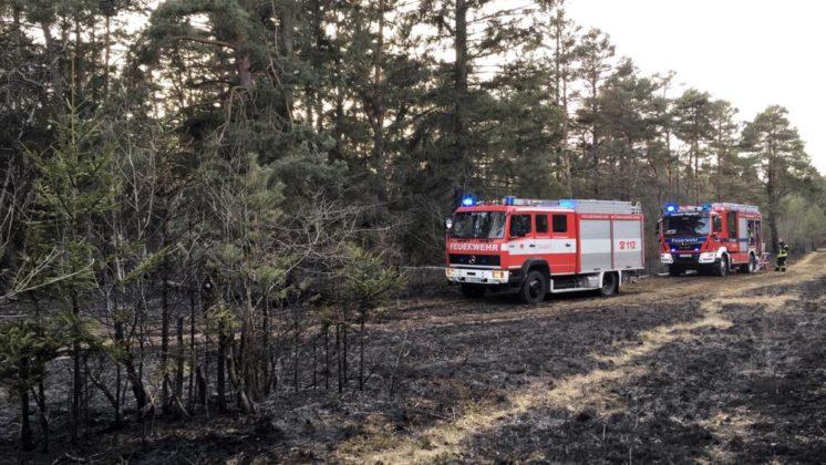 37EFD520-0A02-4954-8B72-FE59F912E26D-746x420 Ausgedehnter Waldbrand im Siebentischwald hält Feuerwehren in Atem Augsburg Stadt Bildergalerien News Newsletter Polizei & Co Region |Presse Augsburg