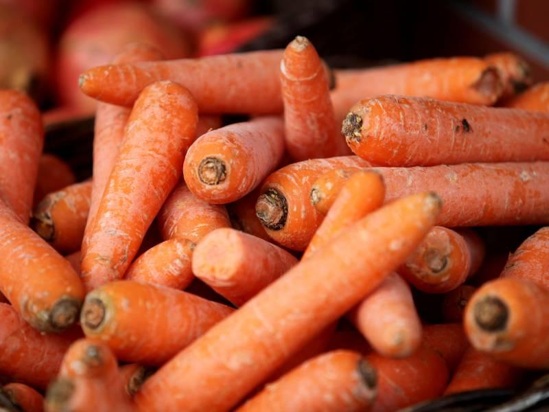 erntemenge-von-gemuese-gestiegen Erntemenge von Gemüse gestiegen Politik & Wirtschaft Überregionale Schlagzeilen 1 14 2018 2019 Betrug Deutschland Gemüse Landwirtschaft Montag Niedersachsen Nordrhein-Westfalen Vergleich |Presse Augsburg