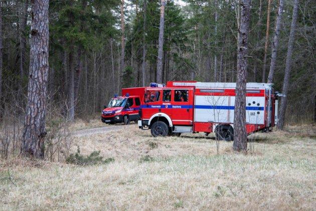 Feuer Wald 004