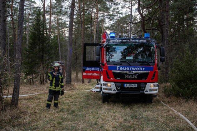 Feuer Wald 011