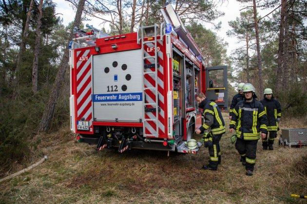 Feuer Wald 020