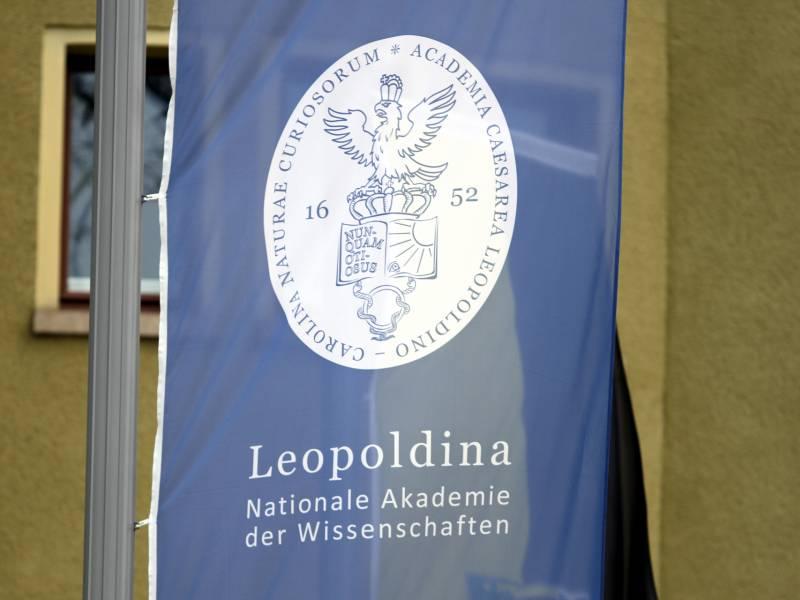 Kipping Kritisiert Leopoldina Vorschlaege Zur Krisen Finanzierung