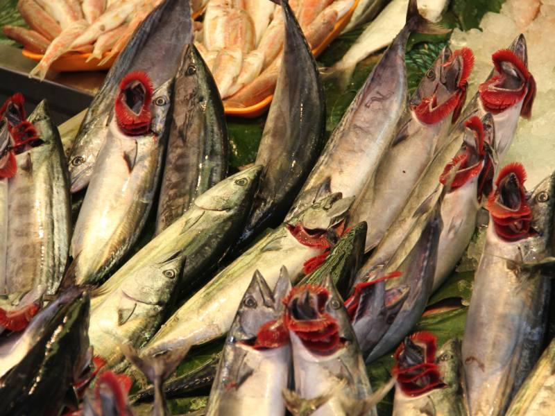 Fischerzeugung 2019 In Aquakulturen Um 24 Prozent Gestiegen