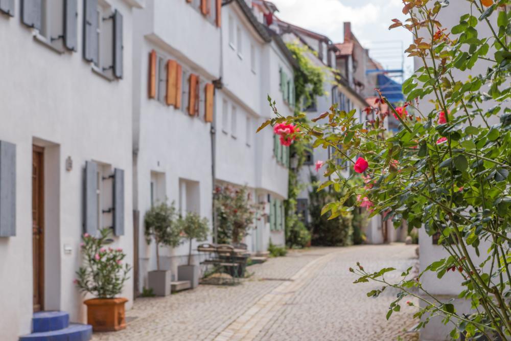 2020_06_03_Stadtführungen_Röger Entdeckungsreisen durch Günzburg dürfen starten Freizeit Günzburg Kunst & Kultur News Region |Presse Augsburg
