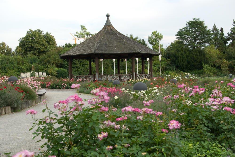 20 06 24 Botanischer Garten Augsburg