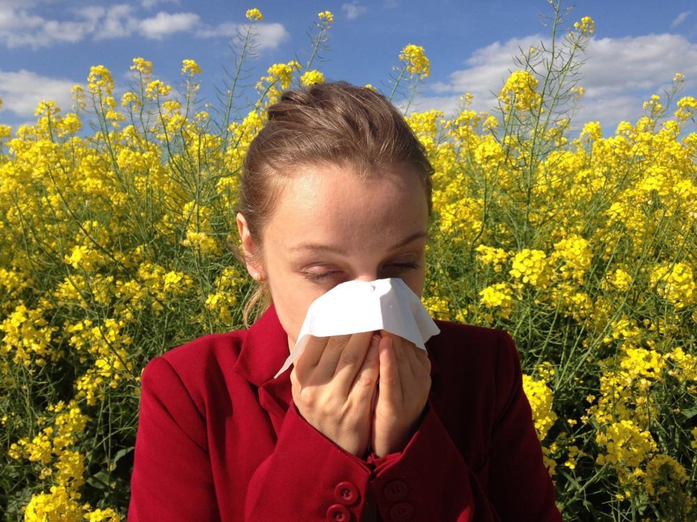 Allergy 1738191 1920
