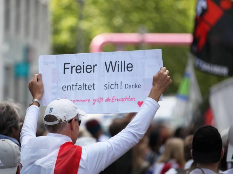 Linken Chefin Kritisiert Teilnehmer Von Berliner Corona Demo